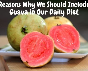 Reasons Why We Should Include Guava in Our Daily Diet